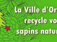 Sapins de noël : recyclage